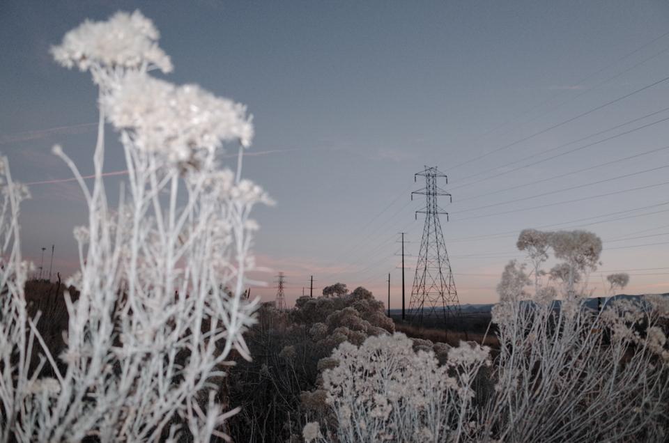 Powerlines, Kevin Samuels